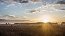 sunrise-717816_1280